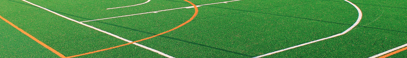 landscaping court sports school functional low maintenance